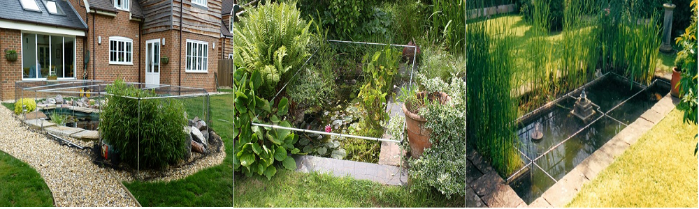 Pond Cover Cages